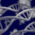 Το DNA μου Ελληνικόν